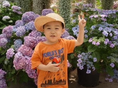 RICCA HAIR 梅田中崎 6月の日程 花鳥園 紫陽花