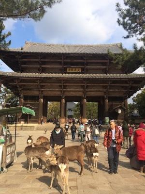 中崎町 美容室 RICCA 奈良 東大寺