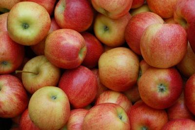 りんごポリフェノールとは?
