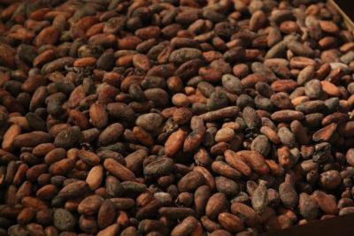 cocoa-1134226_1280